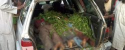 Armed Bandits Brutally MURDER 34 People In President Buhari's State [PHOTOS]